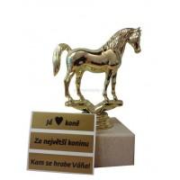 Trofej kůň